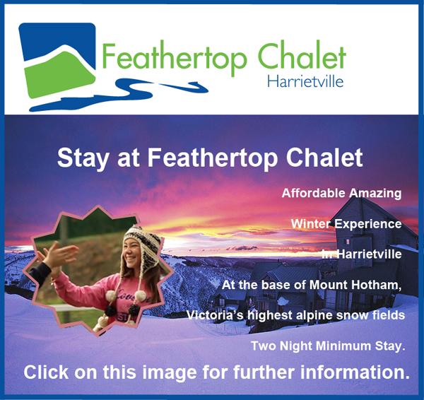 Feathertop chalet copy