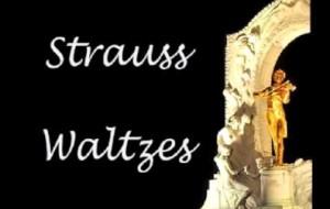 """STRAUSS SECRETS"" – By Des Kelly"