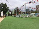 Event Grass