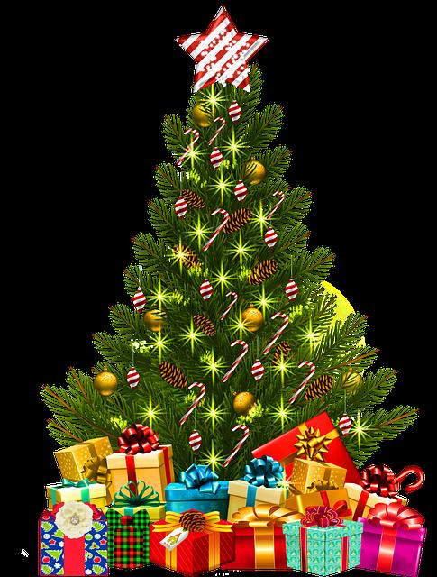 Somebody stole my Christmas – by Capt. Elmo Jayawardena