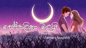 Sepalika Malai (සේපාලිකා මලයි) Cover By Miyuru Sangeeth