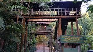 Dunumadalawa Forest Reserve – a habitat island in Kandy City By Arundathie Abeysinghe